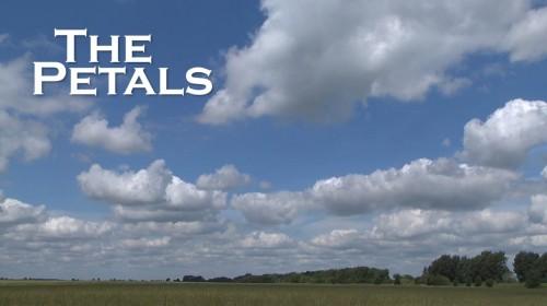 The Petals - Video production company Peterborough